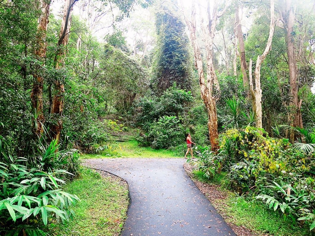 What to do in Coffs Harbour Korora Headland Walk