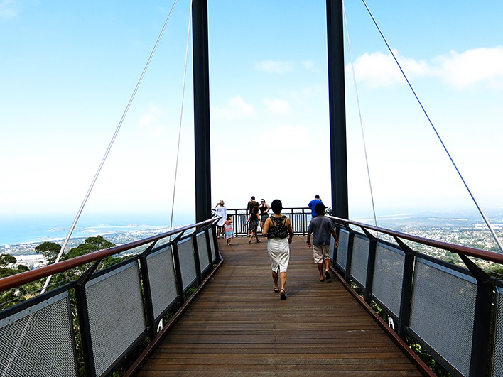 Coffs Harbour Tourist Attrations - Sealy Lookout