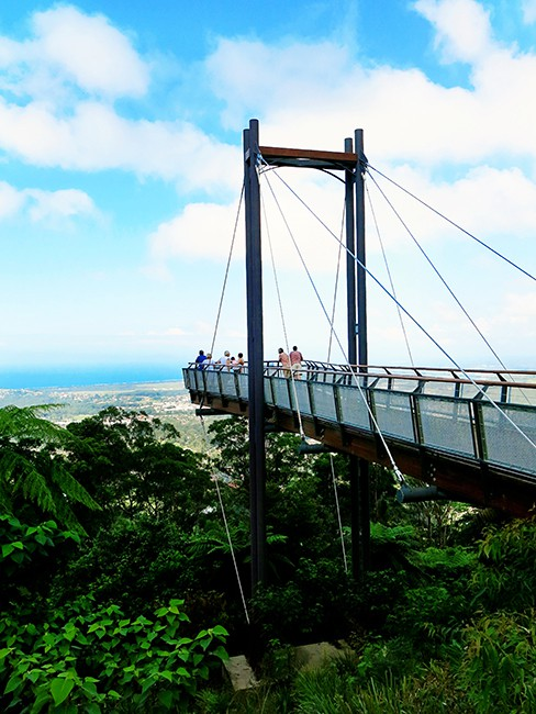 Places to visit in Coffs Harbour - Sealy Lookout
