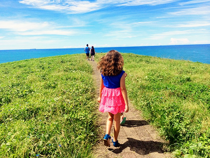 Things to do in Coffs Harbour - Mutton Bird Island
