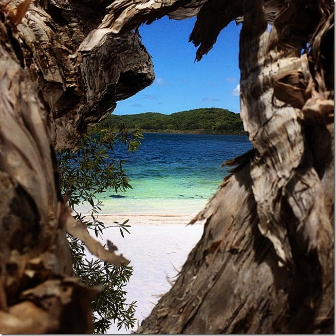Fraser Island Australia: Top 15 Travel Favourites
