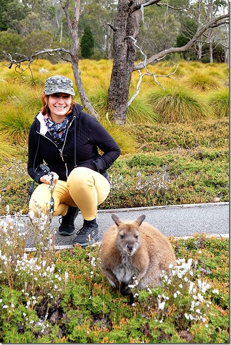 Cradle-Mountain-Wildlife