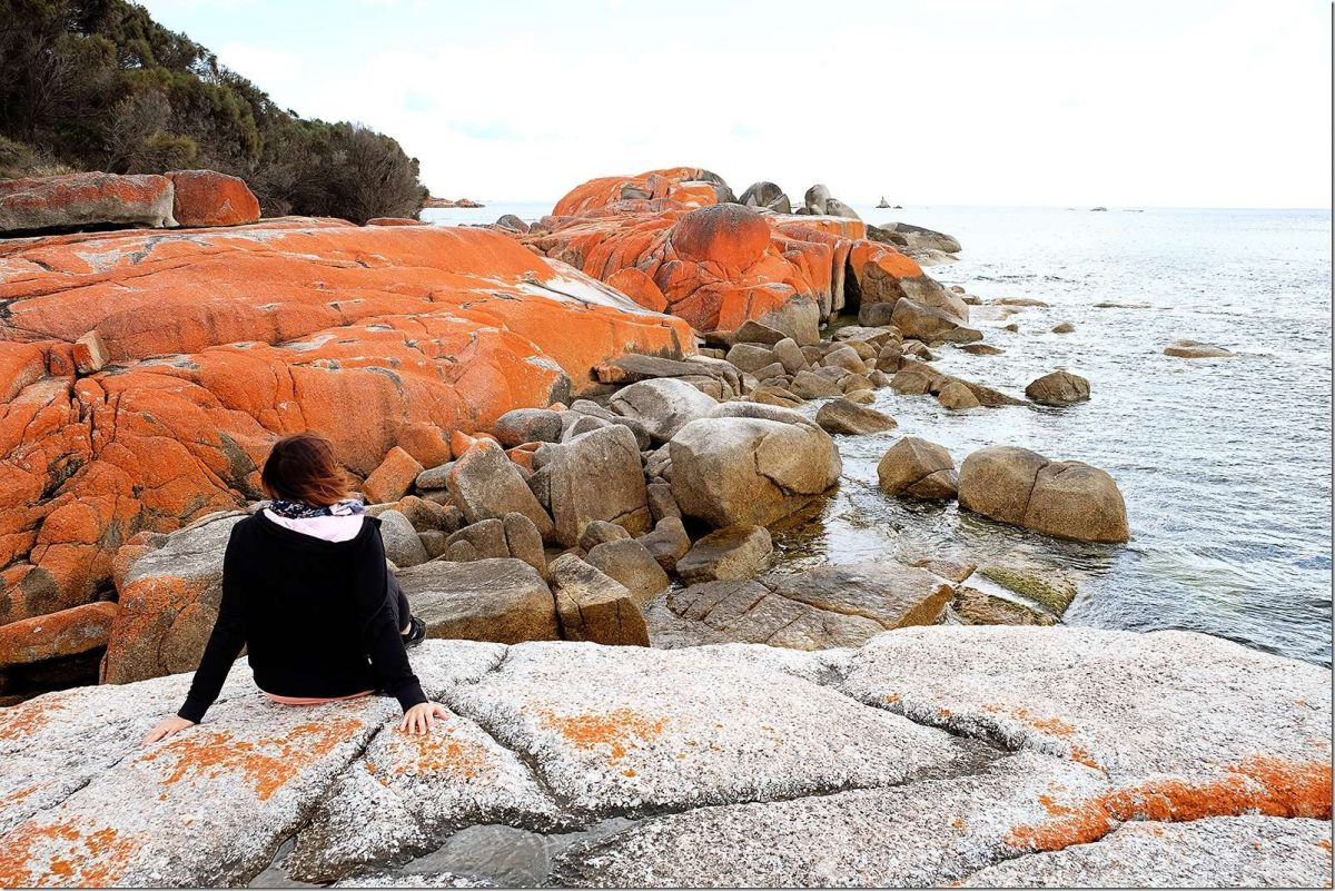Bay of Fires Tasmania - Orange Rocks Australia