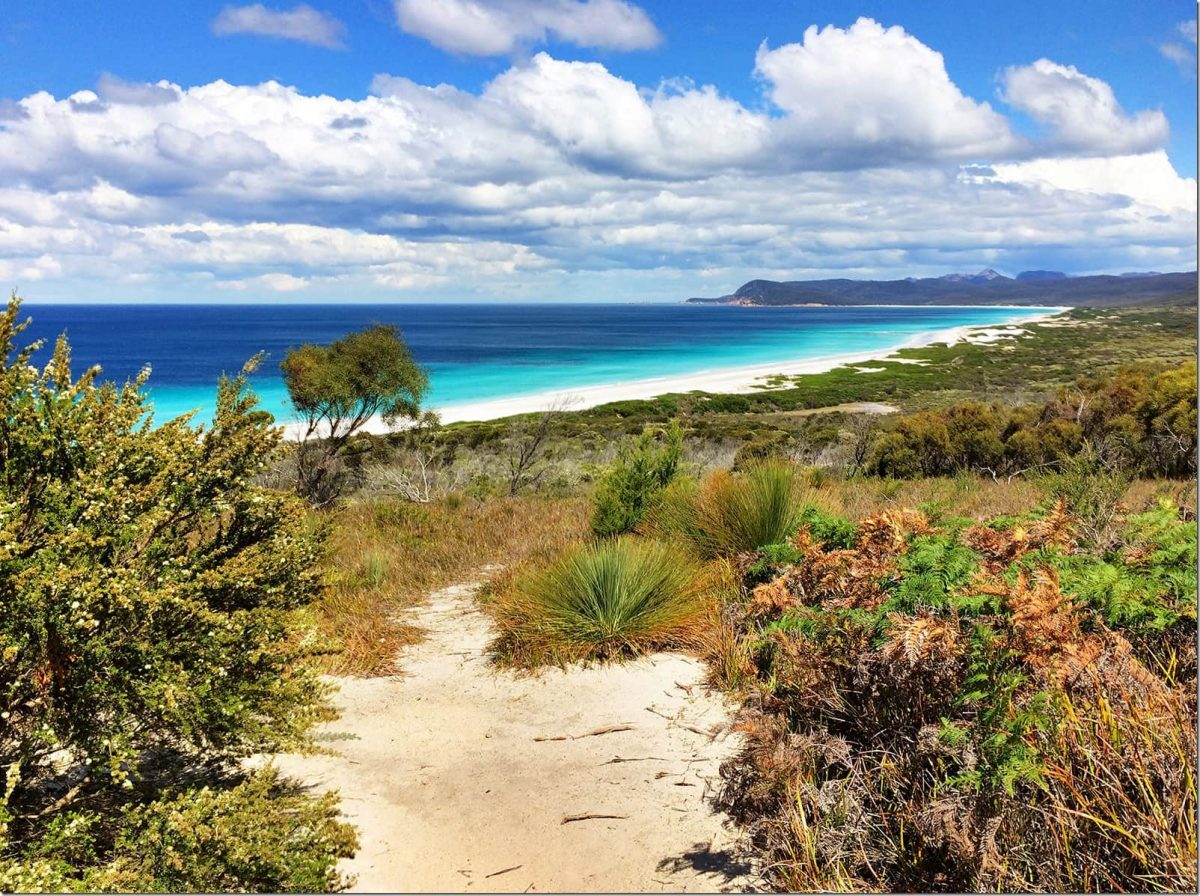 Friendly-Beaches-Freycinet-National-Park-Wanderlust-Storytellers