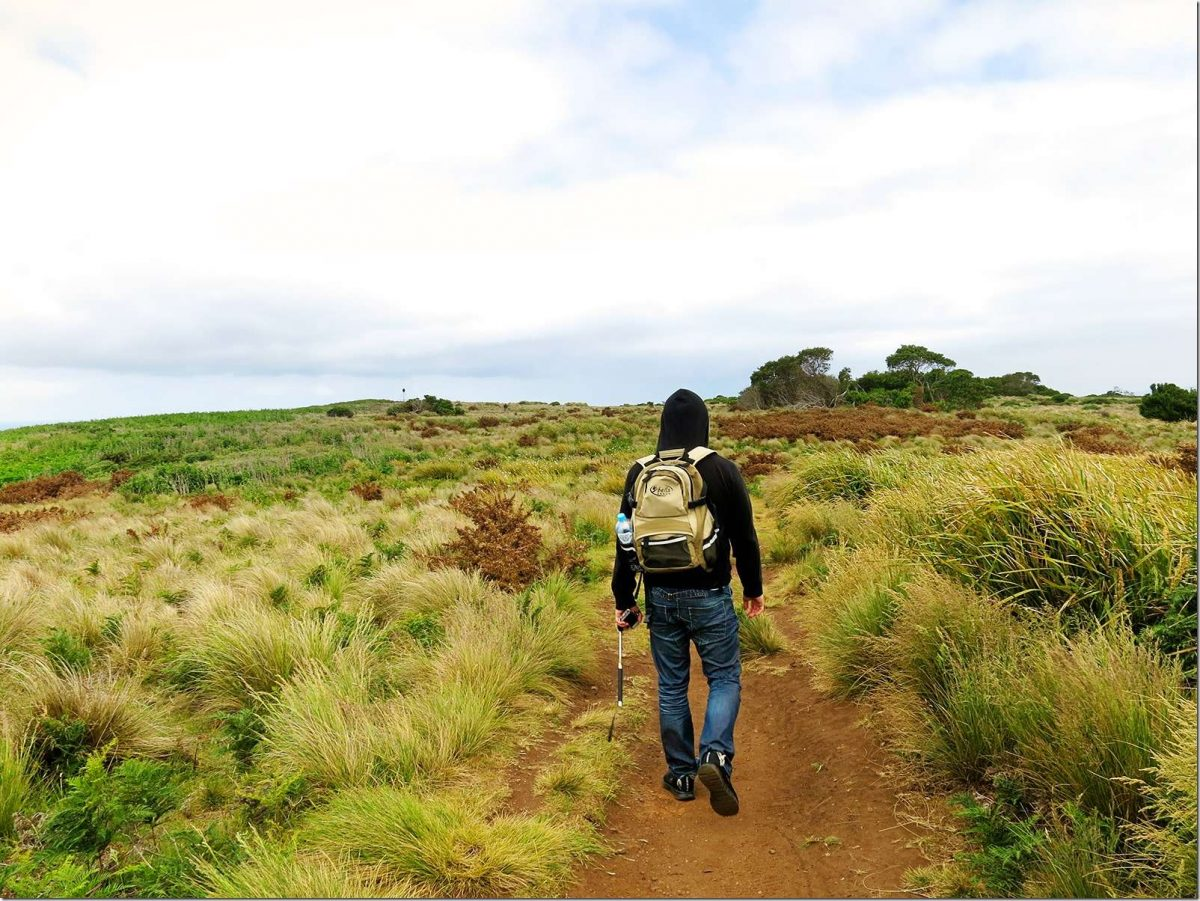 Stanley The Nut, Tasmania - Stanley Nut Walk