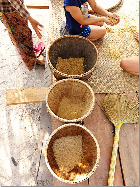 Cambodia Tours: Rice Processing and Preparation