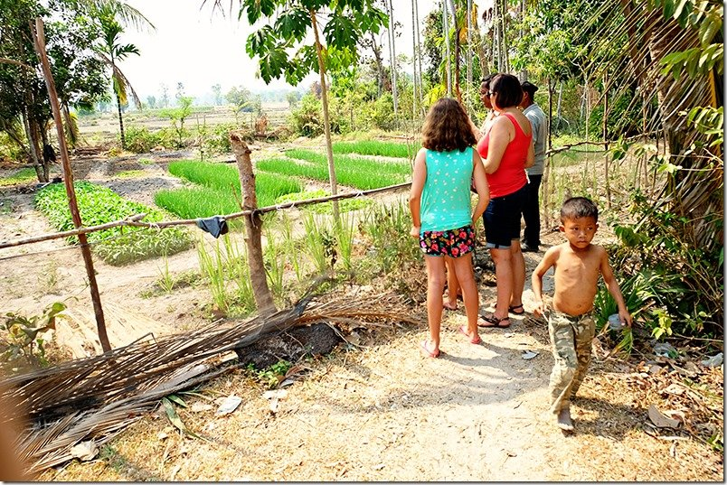 Cambodia Tours: Village Tour Farm Life