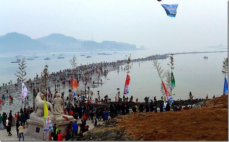 Jindo Festival