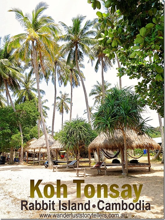 Koh Tonsay (Rabbit Island) Palm Trees
