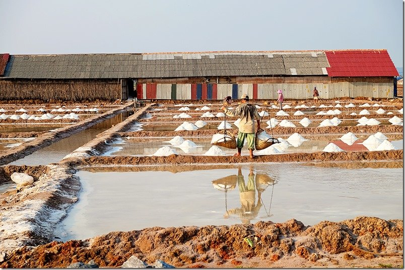 Salt Fields of Kampot Province