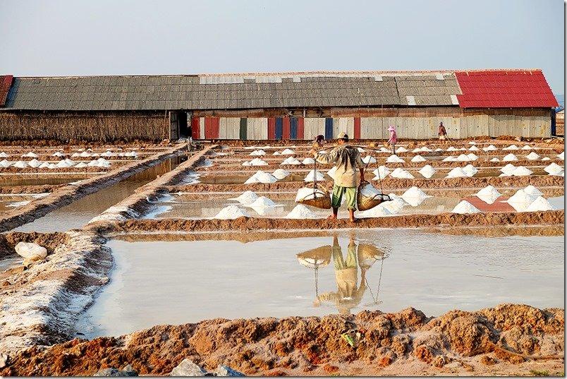 Salt Fields of Kampot Province