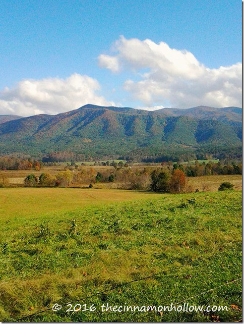 cades-cove-tennessee
