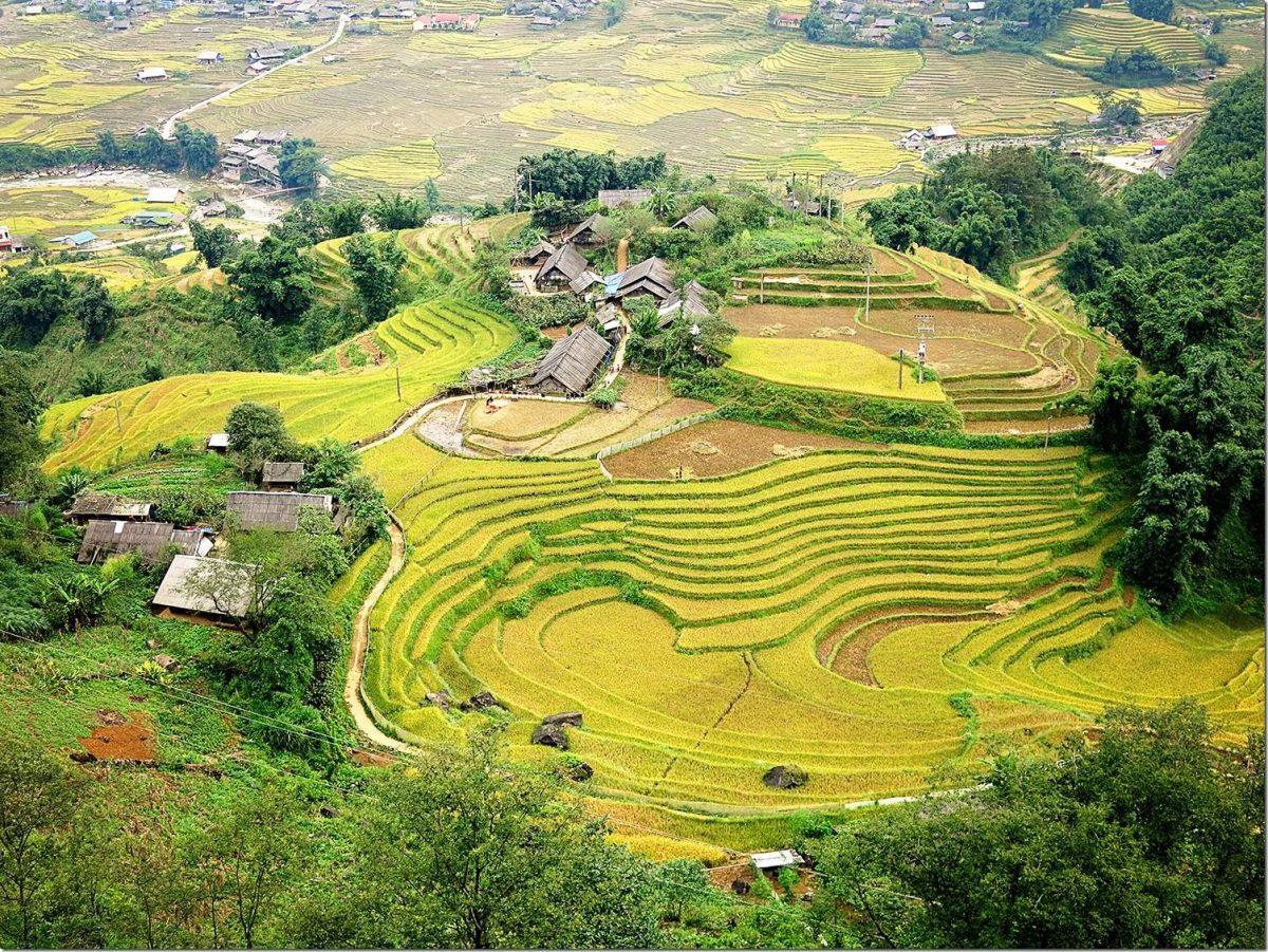 Sapa Muong Hoa Valley Hiking