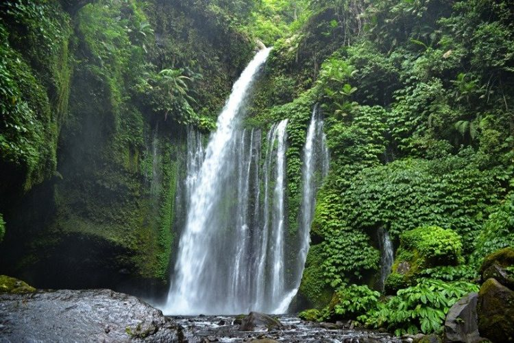Lombok Attractions Tiu Kelep or Sendang Gile Waterfalls