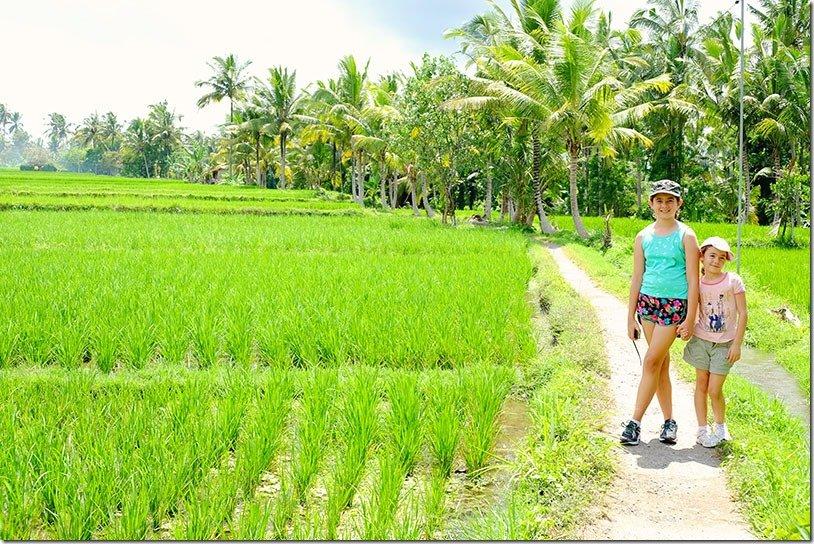Jalan Ubud Walks in Bali