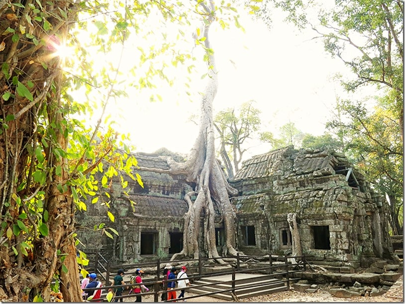 Ta Prohm with Kids 4