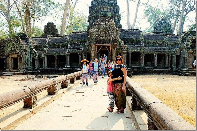 cambodia tree temple