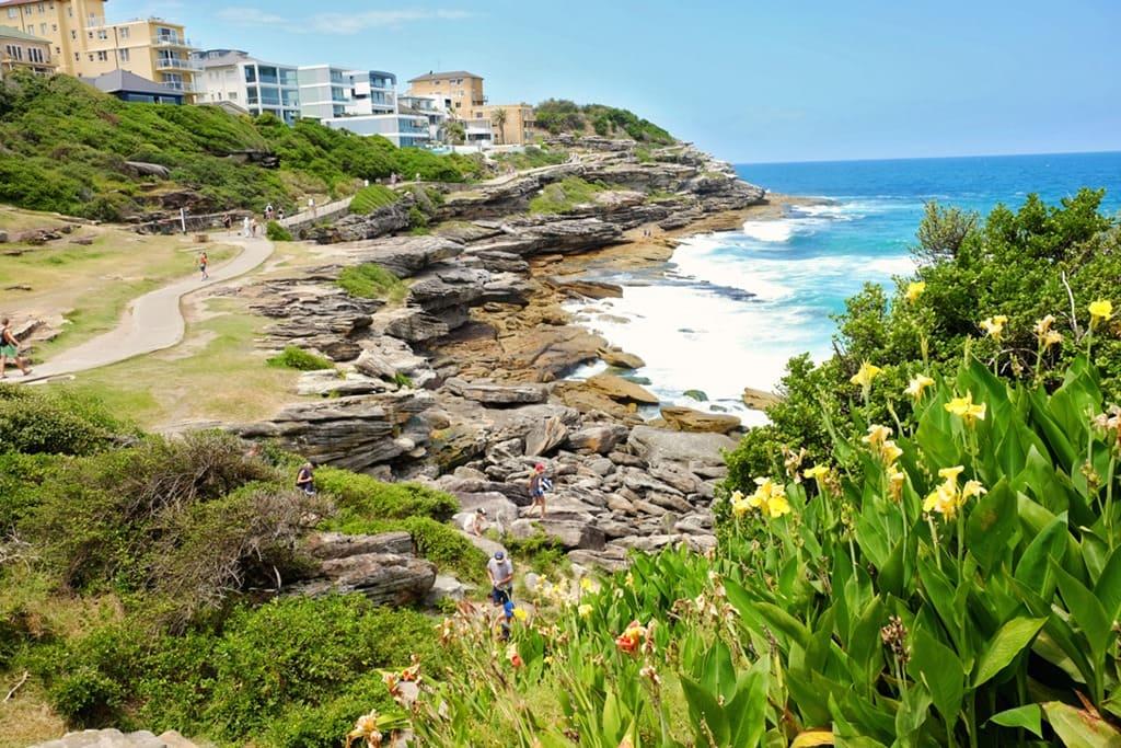 Bondi To Coogee Walk One Of The Best Sydney Coastal Walks