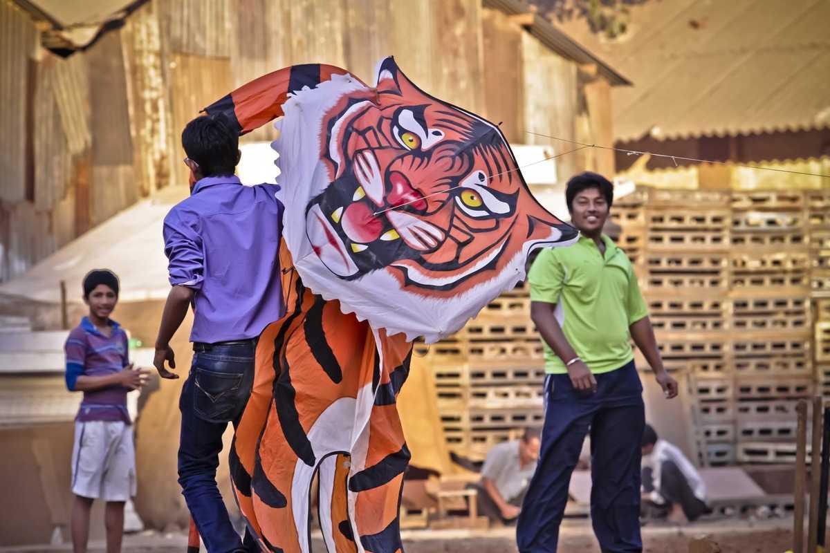 Kite festival, Jodhpur