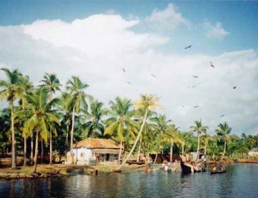Top 5 Places to Visit in Kerala, India