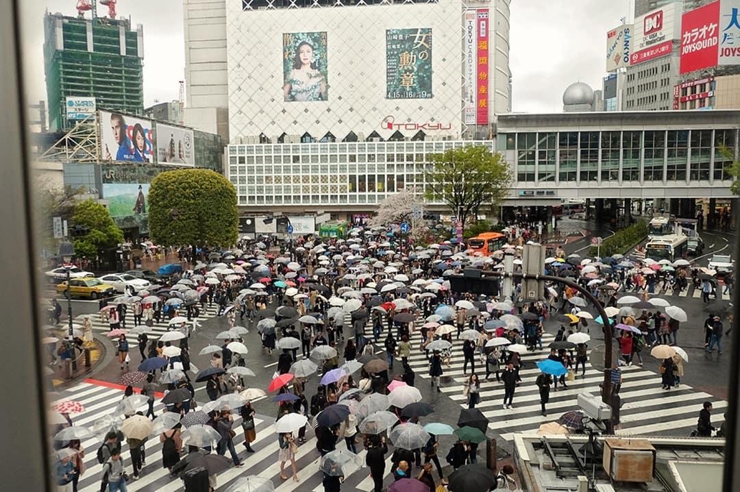 Shibuya Crossing | Tokyo's Busiest Crossing
