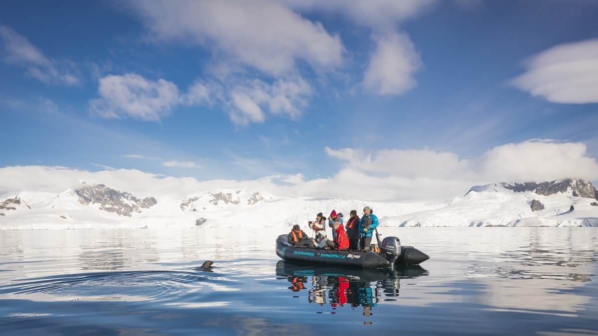 Antarctic Peninsula, Foyn Harbour