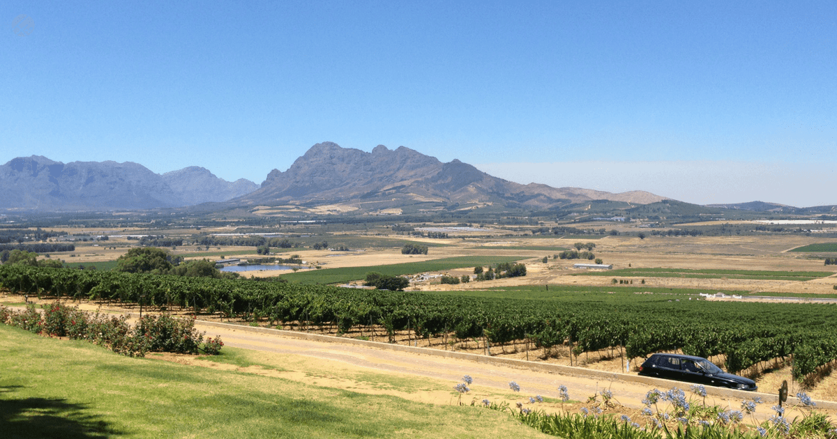 child friendly wine farms stellenbosch