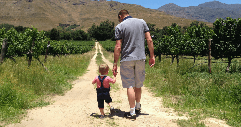 child friendly wine farms cape town