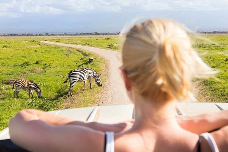 adventure holidays for families - Safari