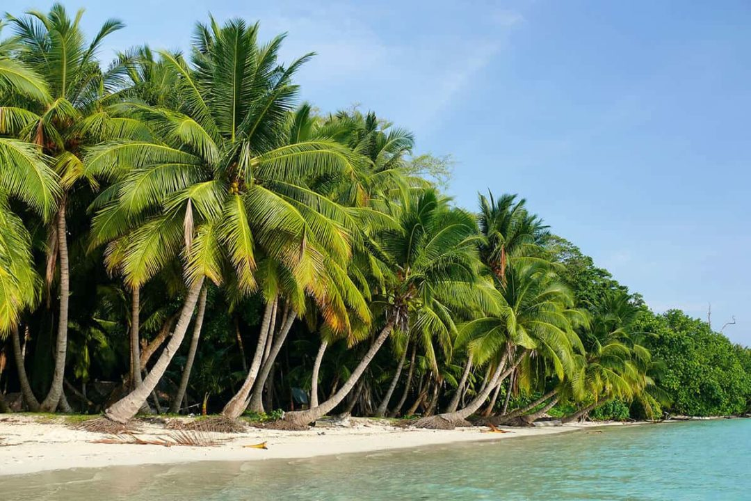 Best time to Visit Andaman and Nicobar Islands