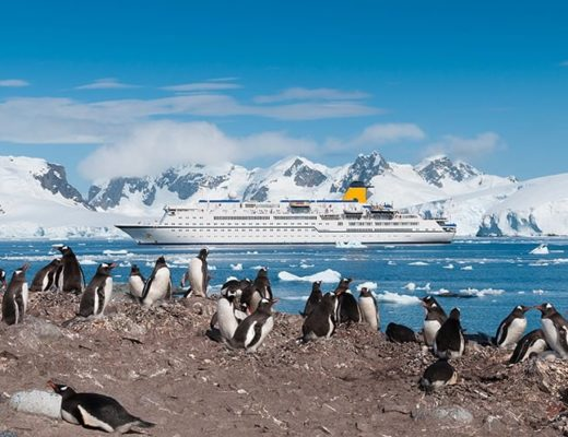 Antarctic Cruise with Kids