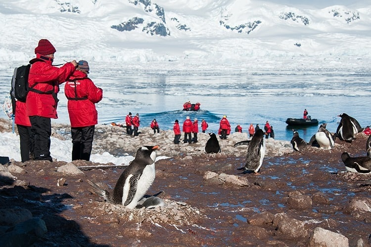Antartica with Kids