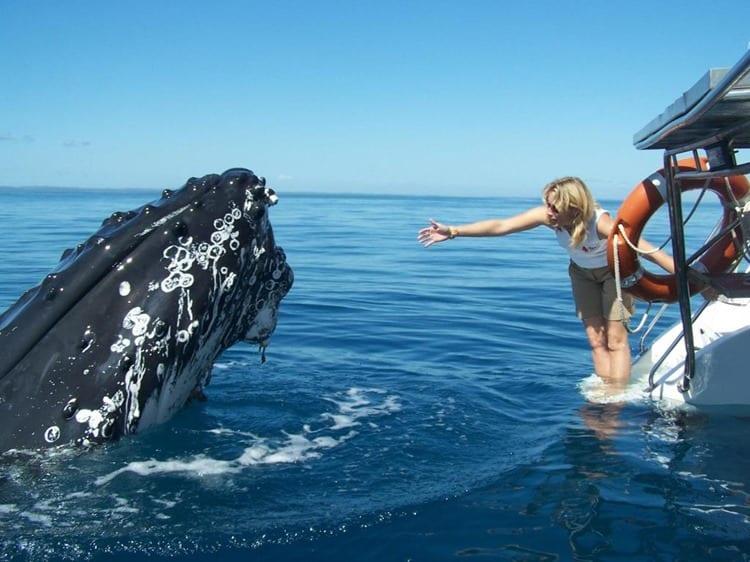 Kingfisher Bay Fraser Island Activities