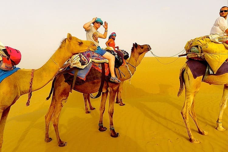 Get-mesmerized-by-a-camel-ride-during-the-Desert-Safari