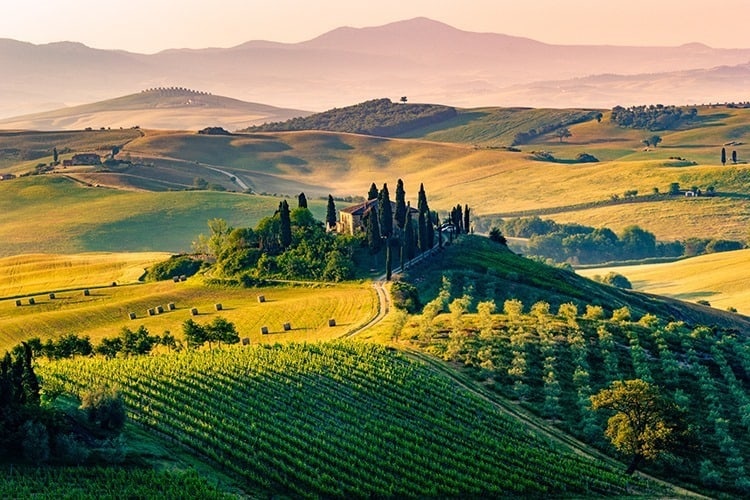 The Tuscan Landscape