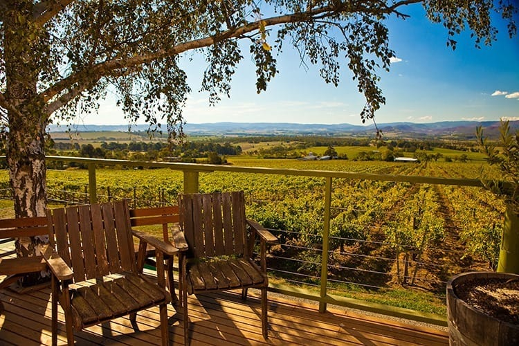 Warramante Winery Overlook