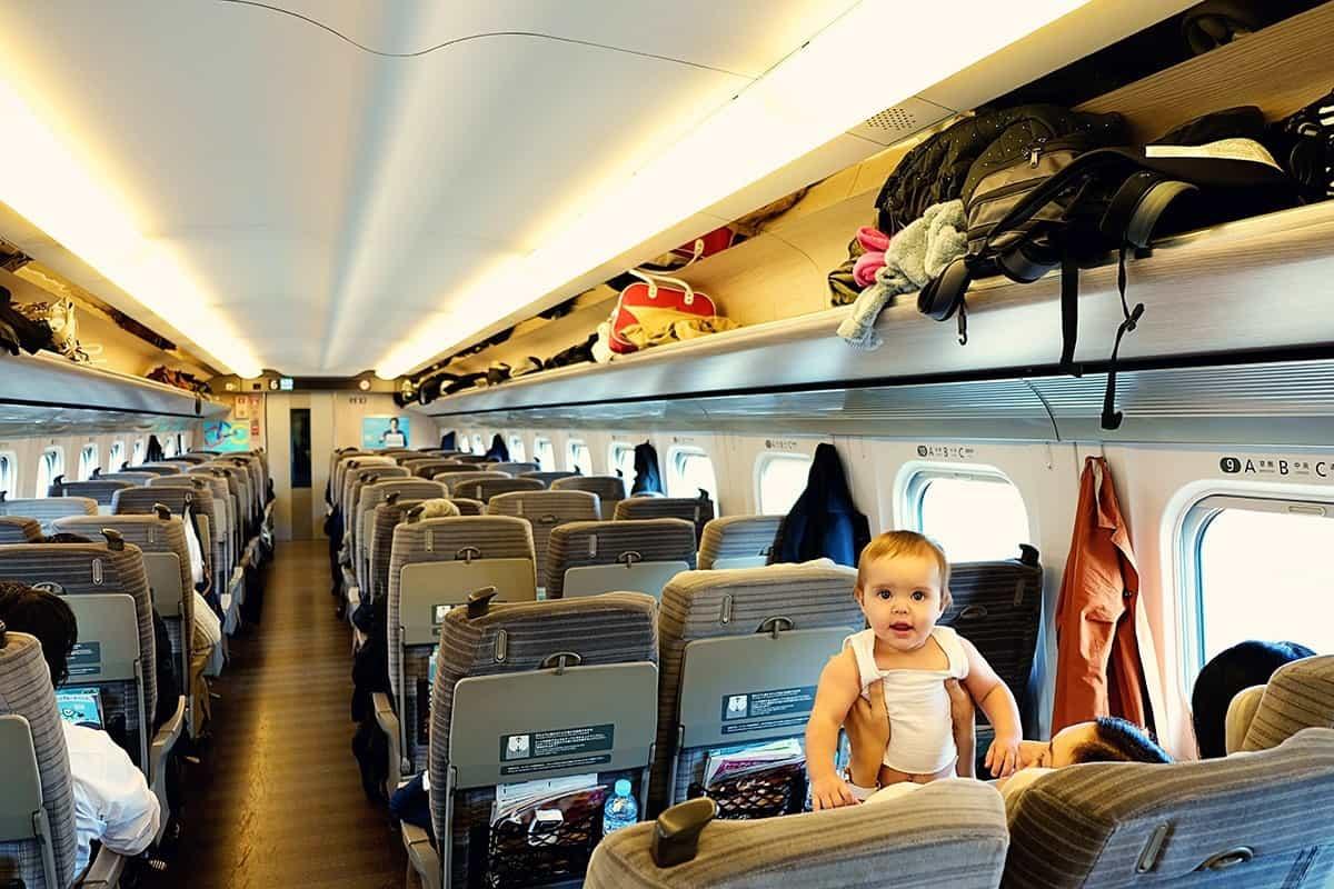 Avie in a JR Train