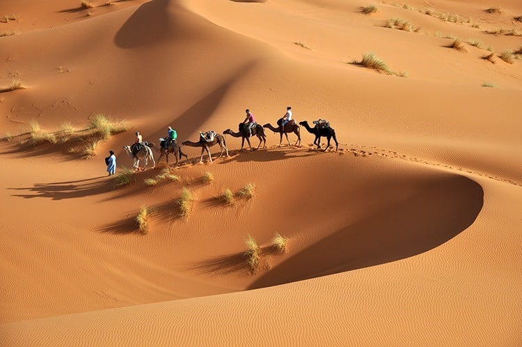 sahara - holiday with teenagers