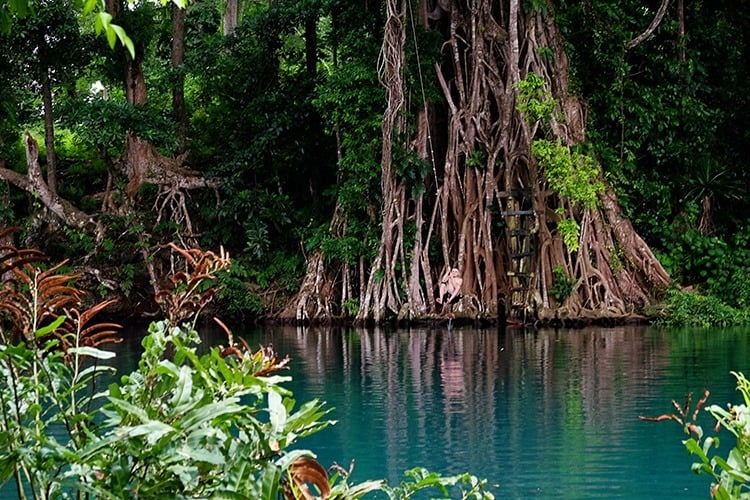 Matevulu Blue Hole Santo Island Vanuatu