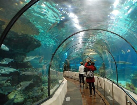Things to do in Barcelona for Kids