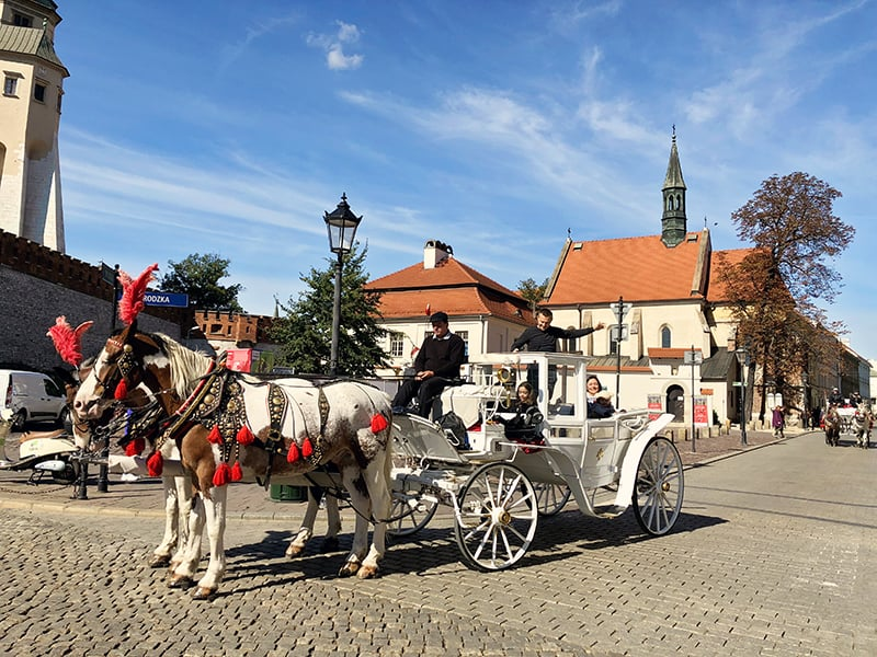 Cool things to do in Krakow Old Town
