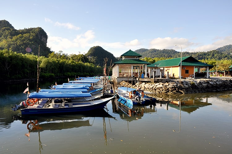 Langkawi Malaysia Mangrove Tour
