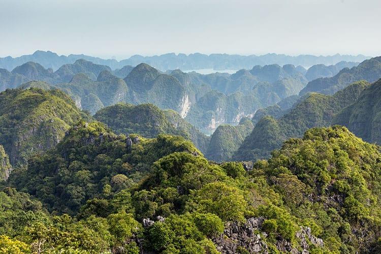 Lan Ha marine bay landscape from Cat Ba National Park