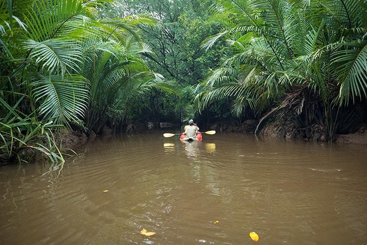 Kayaking at Klong Sung Nae, Thailand's Little Amazon.