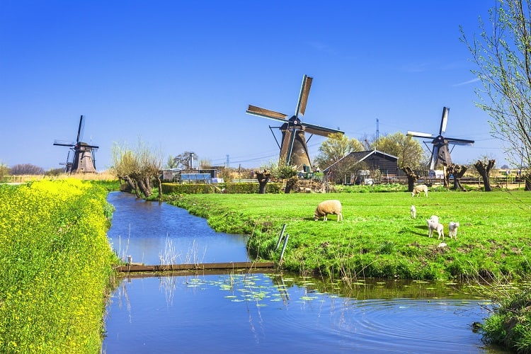Kinderdijk countryside