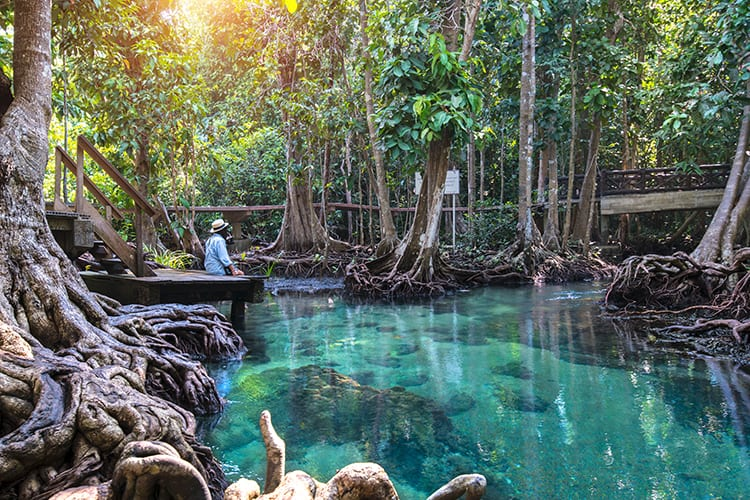 Krabi Emerald Pool & Blue Lagoon