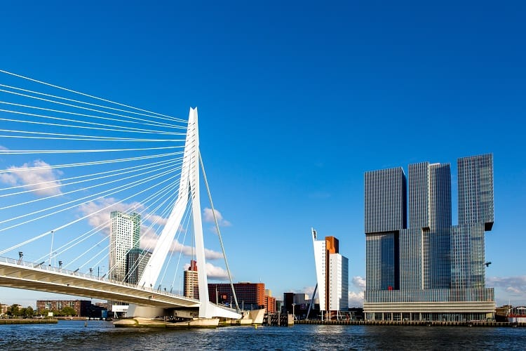 Skyline Rotterdam – Erasmus bridge