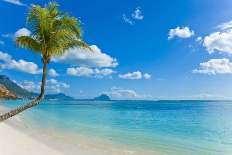 Flic en Flan in mauritius