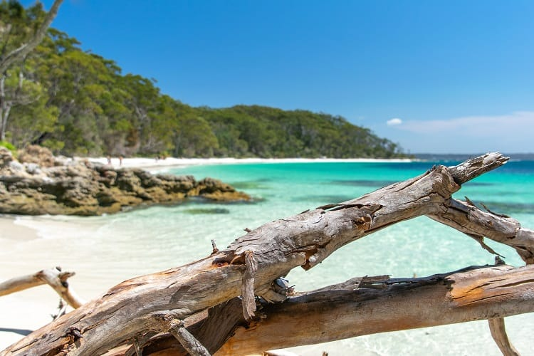 Things to do in Shoalhaven - Booderee National Park