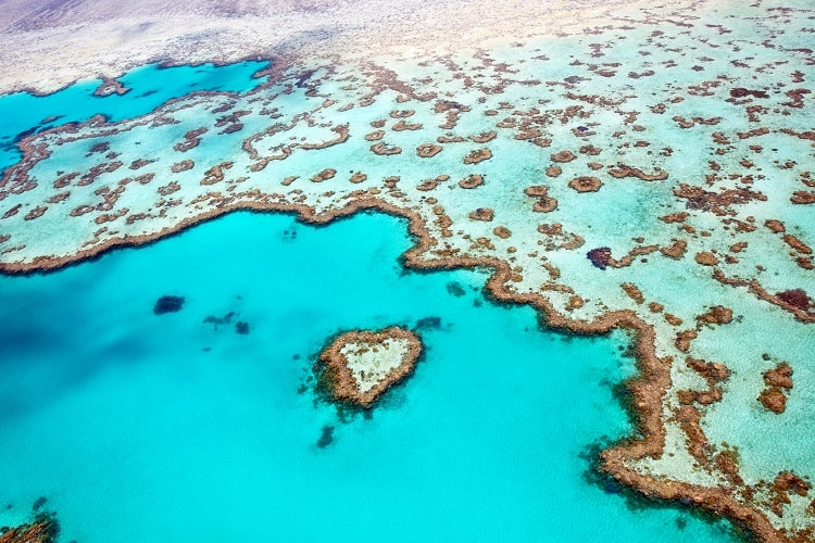 Things to try in Australia - Check out the Great Barrier Reef